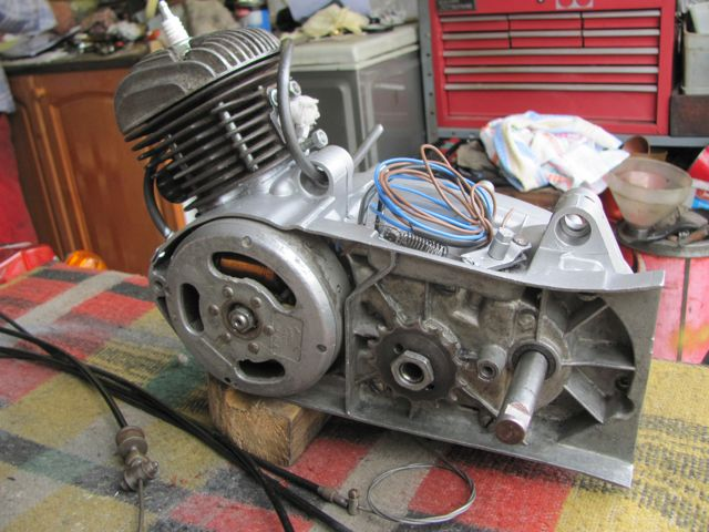 2 Vivi Victoria engine ns