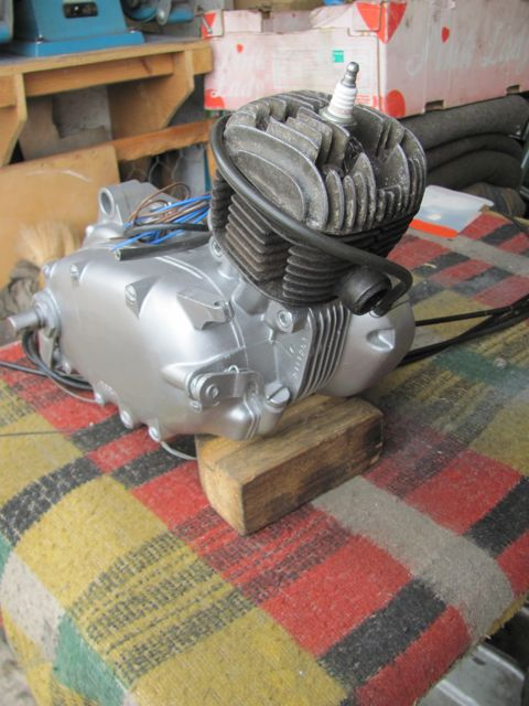 3 Vivi Victoria engine front