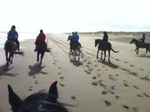 Team Wellwick beach