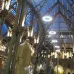 4 oxford museum main hall