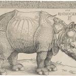 754px-Dürer's_Rhinoceros,_1515