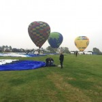 4 rain grass roots balloon