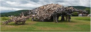 Boland colection vermontasaurus