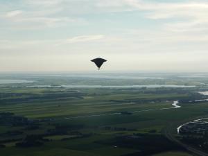 6 Aston Martin ufo